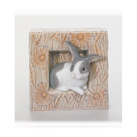 Conejo Natural Frames-01008072