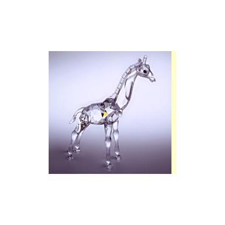 Baby giraffe Swarovski -236717-SWAROVSKI-www.monteroregalos.com-