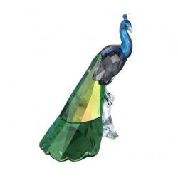 Peacock SCS 2013