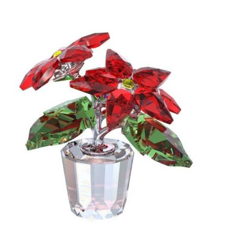 Poinsettia Crystal Moments